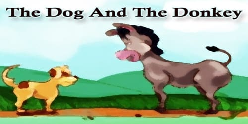 The Dog And The Donkey