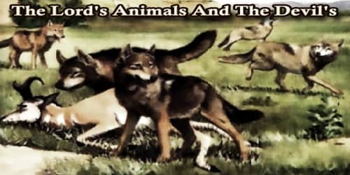 The Lord's Animals And The Devil's