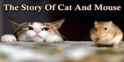 The Story Of Cat And Mouse