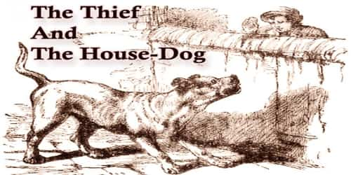 The Thief And The House-Dog