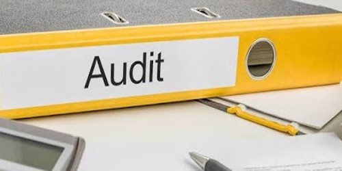 Advantages of Audit Note Book