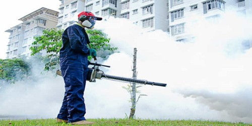 When the Wealth Authorities carried out Fogging against Mosquitoes