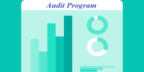 Advantages of Audit Program