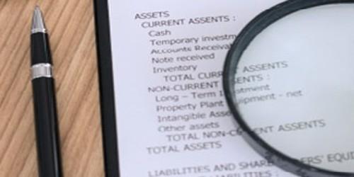 Disadvantages of Audit Program