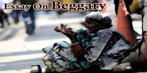 Essay On Beggary