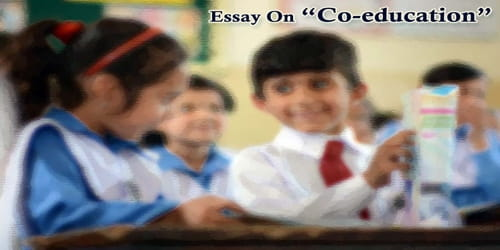 Essay On Co-education
