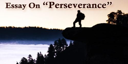 Essay On Perseverance
