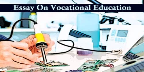 Essay On Vocational Education