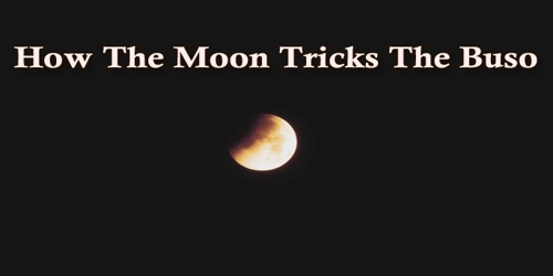 How The Moon Tricks The Buso