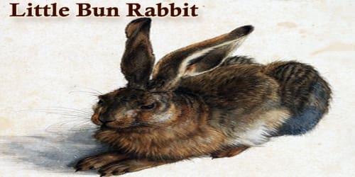 Little Bun Rabbit