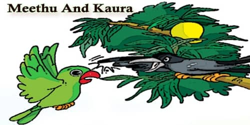 Meethu And Kaura