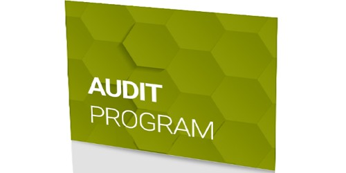 Objectives of Audit Programs