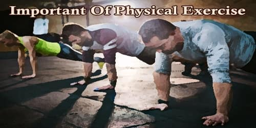 Paragraph On Important Of Physical Exercise