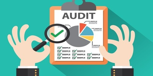 Primary Objectives of Audit