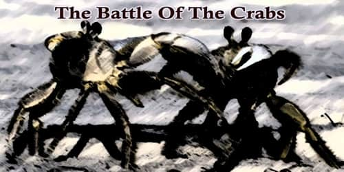 The Battle Of The Crabs