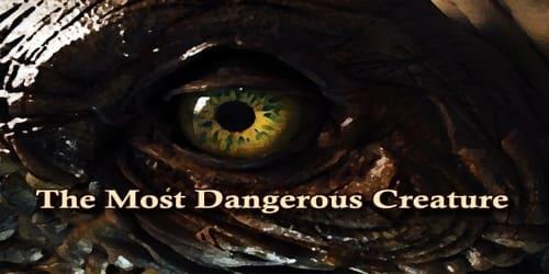 The Most Dangerous Creature