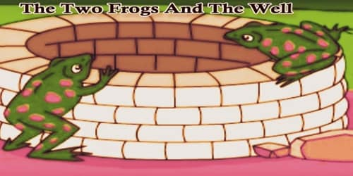 The Two Frogs And The Well