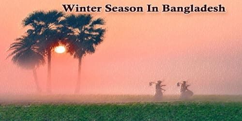 Essay On Winter Season In Bangladesh