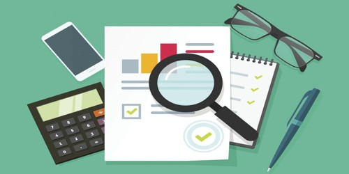Which things should be included in the Audit Program?