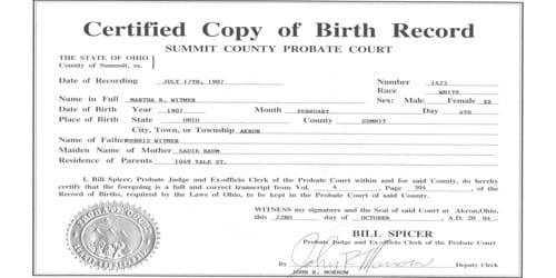 Application Format for Duplicate Copy of Birth Certificate