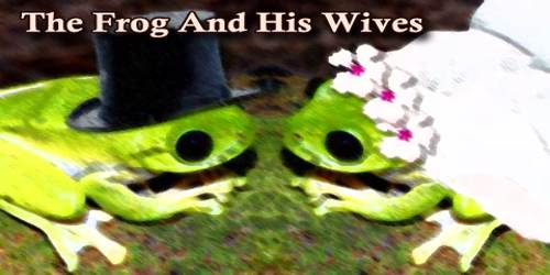 The Frog And His Wives