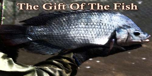 The Gift Of The Fish