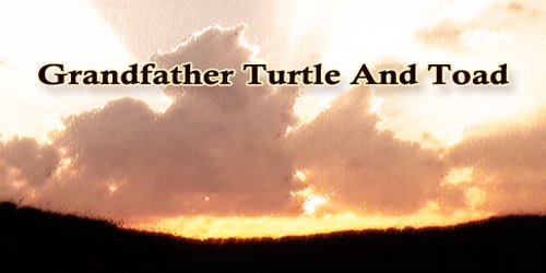 Grandfather Turtle And Toad