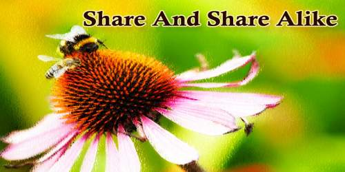 Share And Share Alike