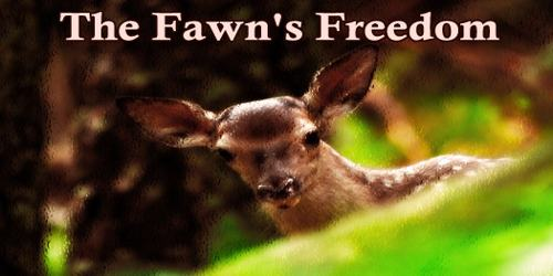 The Fawn's Freedom