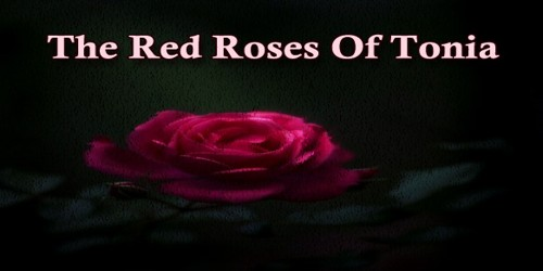 The Red Roses Of Tonia