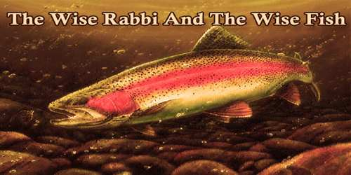 The Wise Rabbi And The Wise Fish