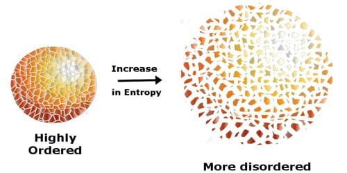 The Entropy