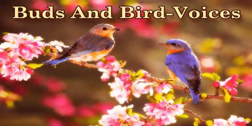 Buds And Bird-Voices