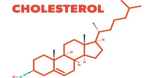 Cholesterol – a Molecule