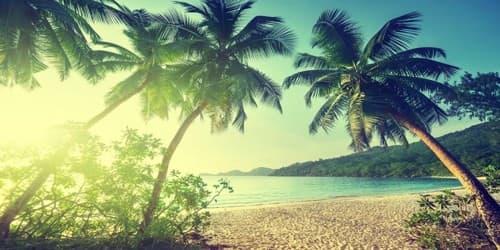 Maledun and the Wondrous Islands