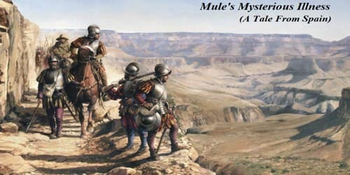 Mule's Mysterious Illness