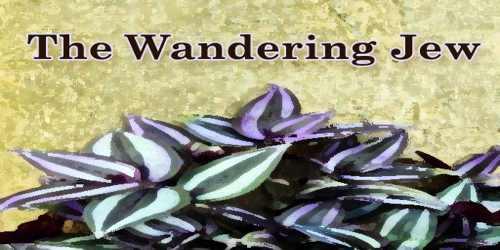 The Wandering Jew