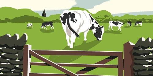 The Wondrous Cow