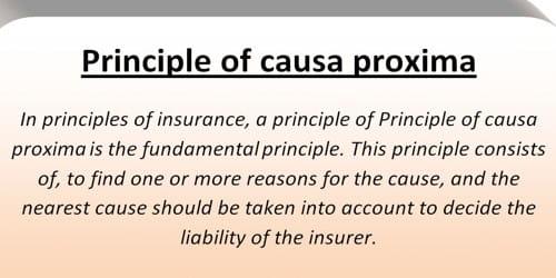 Cause Proxima