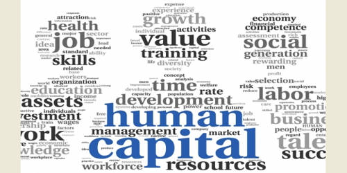Human Capital in Economic Value