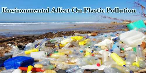 Environmental Affect On Plastic Pollution
