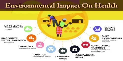 Environmental Impact On Health