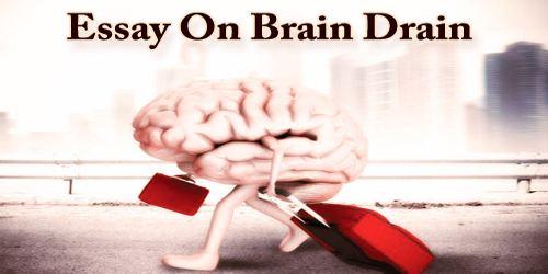 Essay brain drain