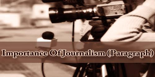 Importance Of Journalism (Paragraph)