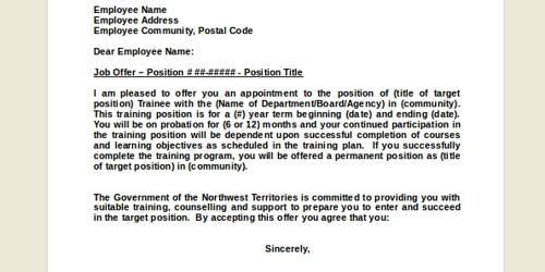 Job Offer Letter for the Position of IT Executive