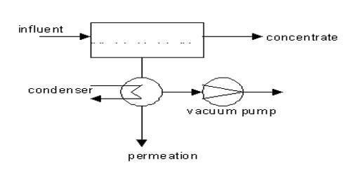Pervaporation