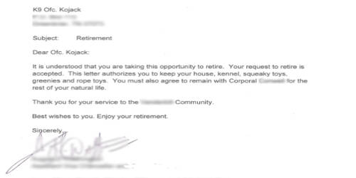 Retirement Notification Letter Format