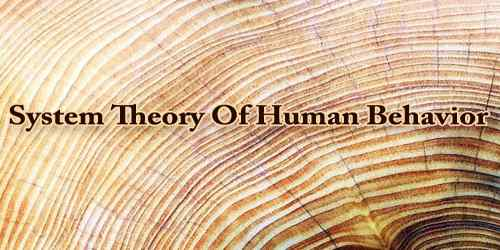 System Theory Of Human Behavior