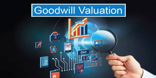 Necessities for the Valuation of Goodwill