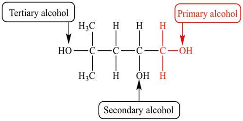 Alcohol – an Organic Compound